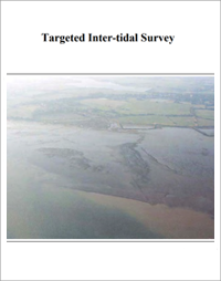 front cover of inter tidal report
