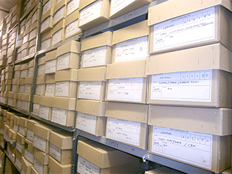 archive boxes stacked in the archaeological store