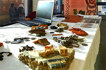 a range of archaeological objects displayed on a table