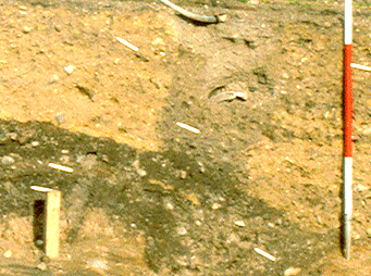 trench showing stratigraphic deposits