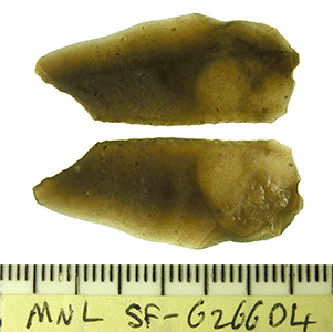 an unpatinated flint microlith of Mesolithic date, struck from a brown flint