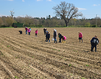 children fieldwaking at rendlesham