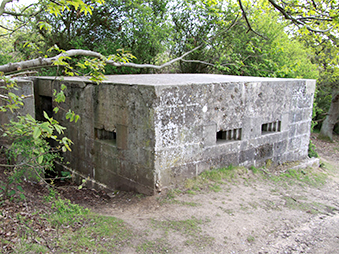 a pillbox at Hoist Covert, Walberswick